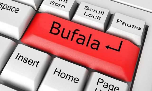 bufala-web