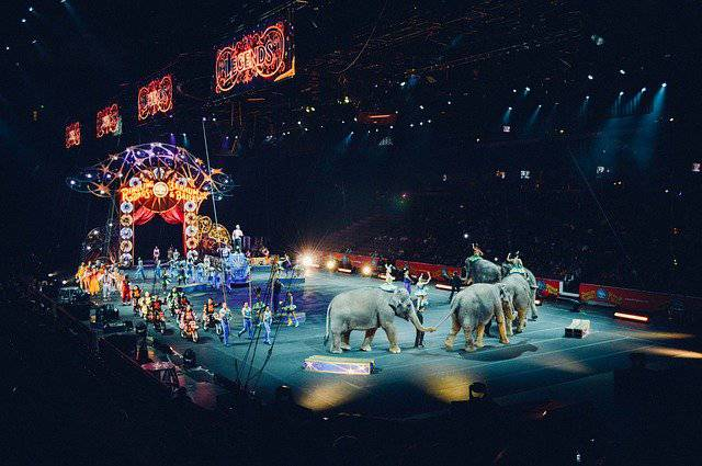 Circo Romina Orfei